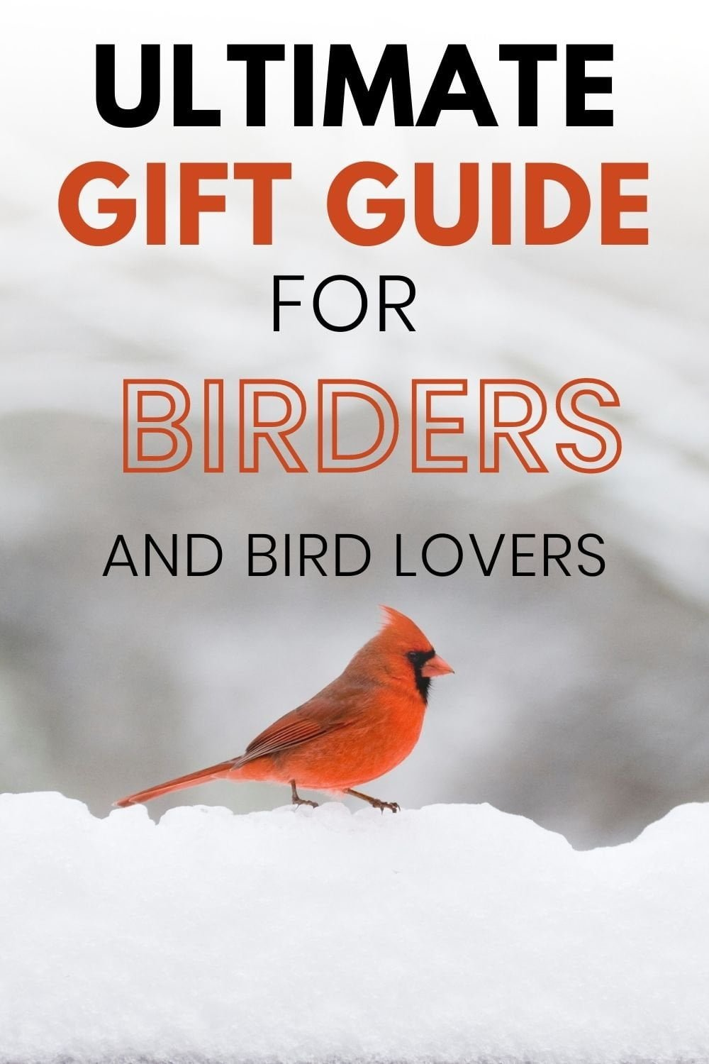 Best gifts for bird lovers (12)